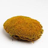 ball moss yellow.jpg