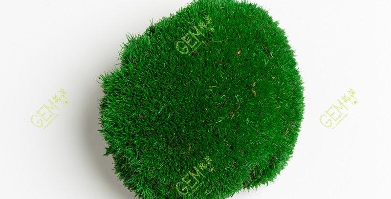 Кочка стабилизированная Green Ecco Moss травяной зеленый