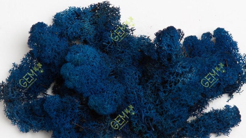 Норвежский мох ягель Грин Екко Мосс синий
