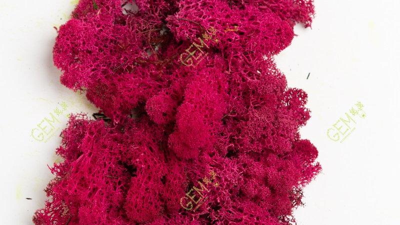 Норвежский мох ягель Грин Екко Мосс красный