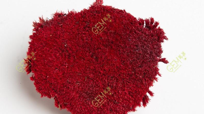 Кочка стабилизированная Green Ecco Moss ярко-красная