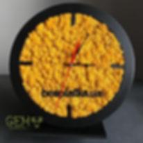 часы из мха.JPG