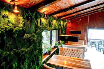 стена из мха в ресторане.jpg