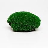 ball moss green.jpg
