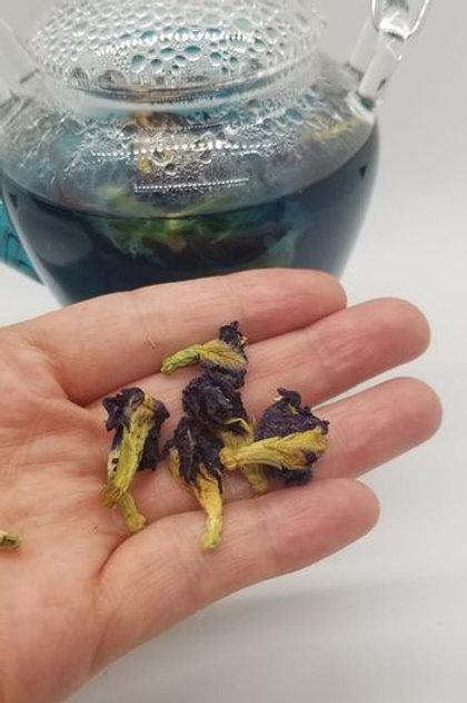 Butterfly Blue Pea