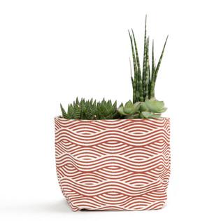 Planter bag for Malia Designs