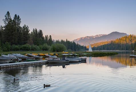Ducks on Hume Lake at Dusk