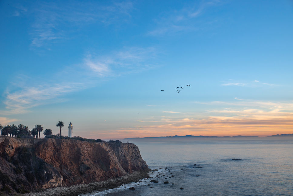 Lighthouse with Pelicans