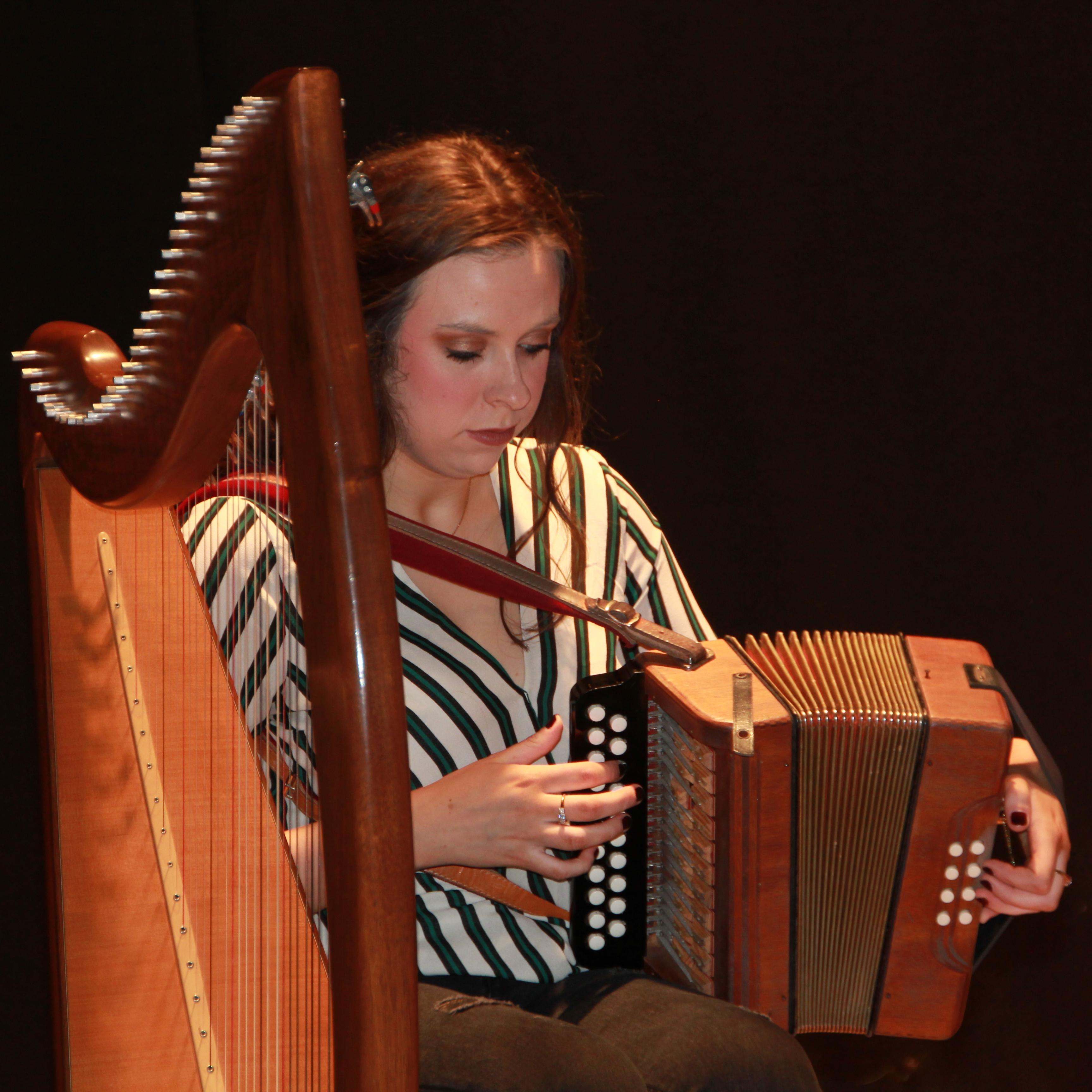Traditional Irish Music (2)