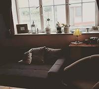 Unsere Lounge - Zum lesen, verweilen und noch einen Cocktail