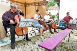 Cello Goes Alb