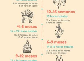 ¿Cuántas horas debe dormir mi bebé?