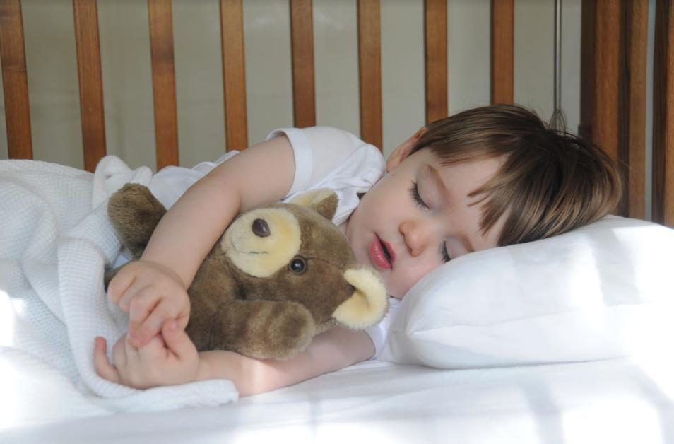siestas en niños preescol
