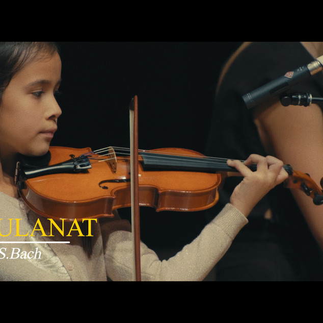 Private violin lessons in Sheepshead Bay, Brooklyn
