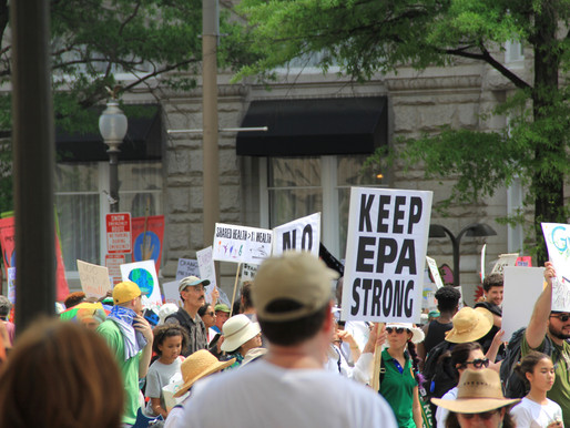 """The Trump Administration Has """"Corroded"""" Federal Environmental Science"""