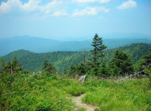Supreme Court Clears Way for Atlantic Coast Pipeline to Cross Appalachian Trail
