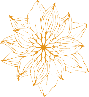 blume_orange_1.png