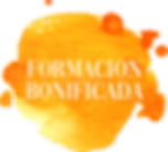 BONIFICADA.png