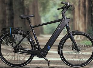 Decatt-Zoom-E-Bike-2021-Heren.png