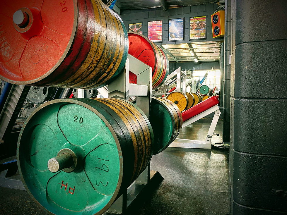 Leg room at Adelaide's Powerhouse Gym