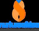 Nurture Africa transparent logo.png