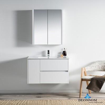 Vanity w/Medicine Cabinets