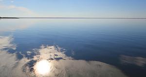 Russian Artemia cysts brine shrimp eggs salt lake