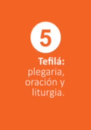 Mishnateinu 5.jpg