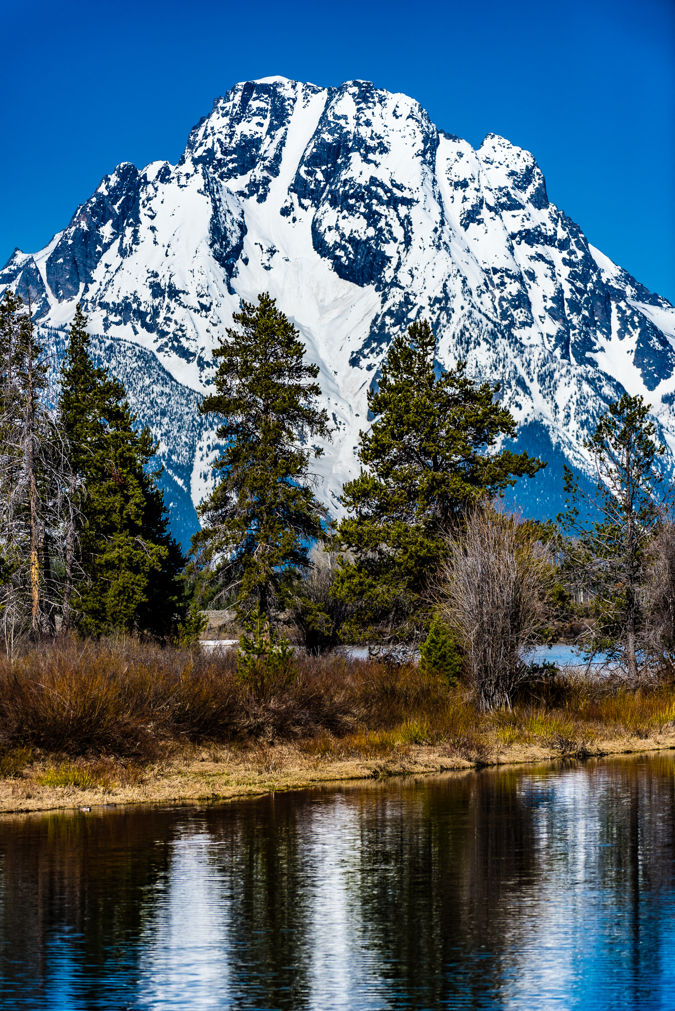 Mount Moran, Ox Bow Bend