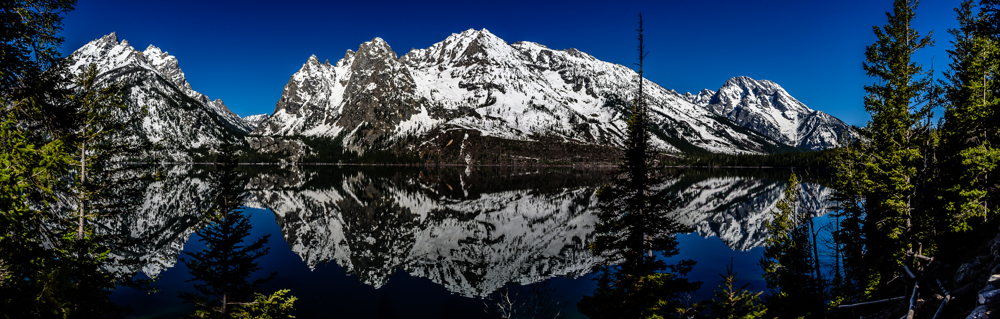 Jenny Lake Reflections