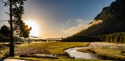 Madison River, Yellowstone NP