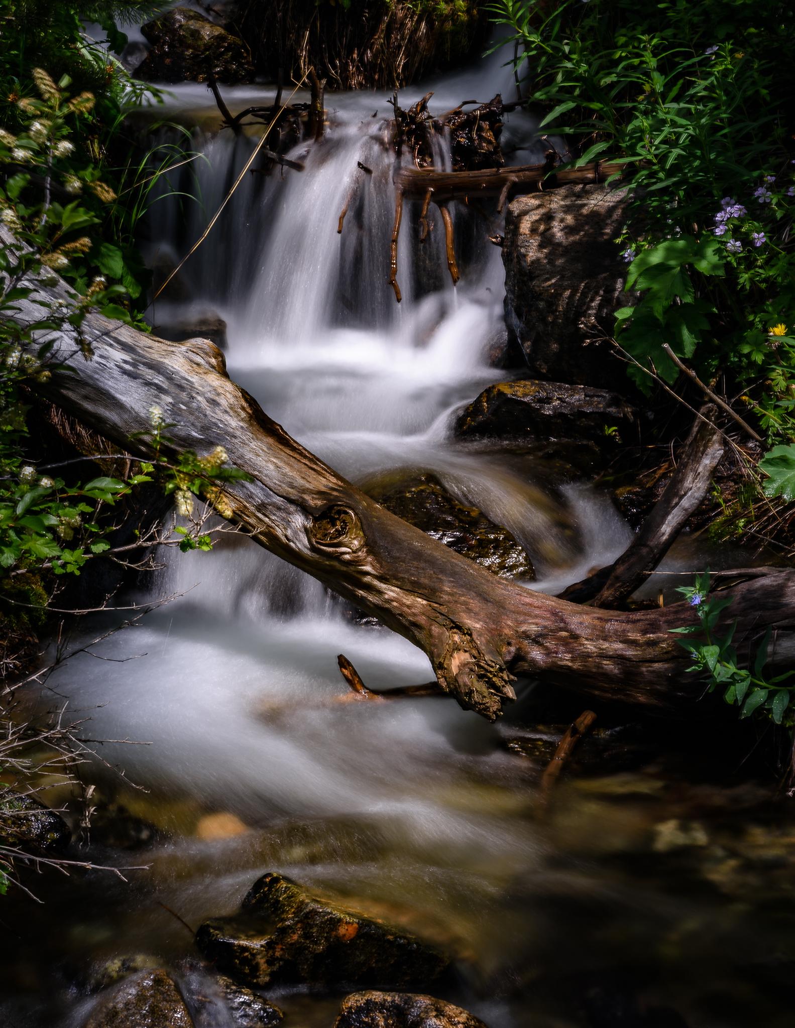 Creek, Alpine, MT