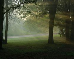 Smoky Trees, Guthrie, OK