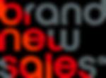 BNS_logo_PNG_web - Copy 1.png