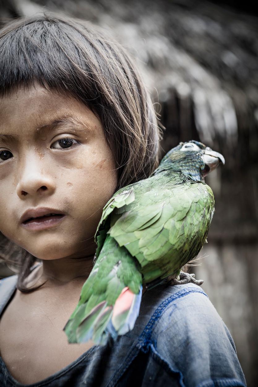 neue Dankeschön bei der Crowdfundingkampagne Hilfe-fuer-Tropic-Ice bei Startnext