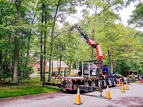 tree cutting crane trees house