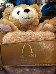Aulani Disney Duffy Blanket