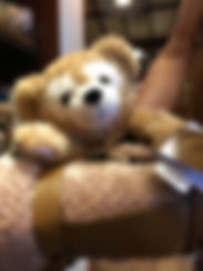 Aulani Disney Duffy Blanket