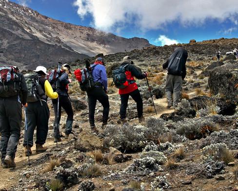 Climbin-Kilimanjaro-hiking-to-Barafu-Cam