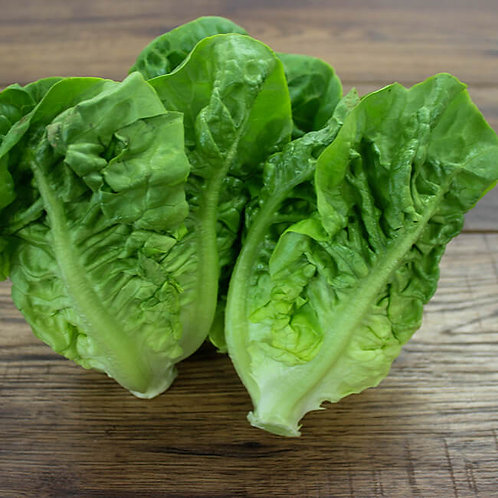 Baby Gem Lettuce - twin pack