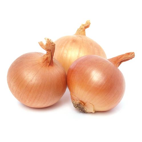 Large white onion - Single