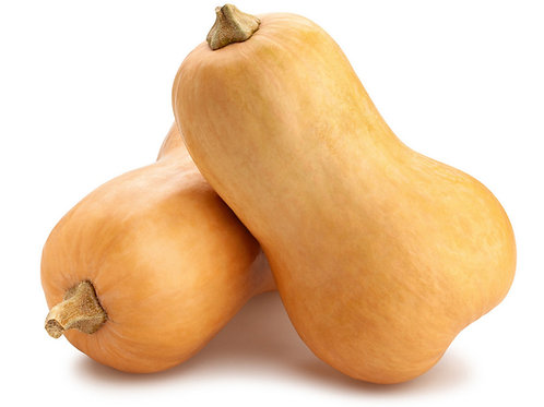 Butternut Squash - Single