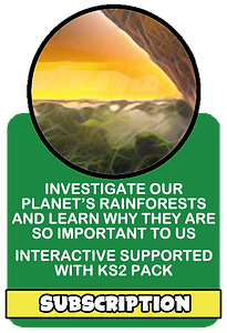 rainforests.png