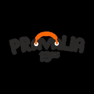 Pravalia 13 Bis logo