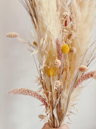 Anastasia Hair Beauty, Pflegeprodukte, Schminkpinsel, Deko, Schmuck, Vasen, Geschenke und Trockenblumen