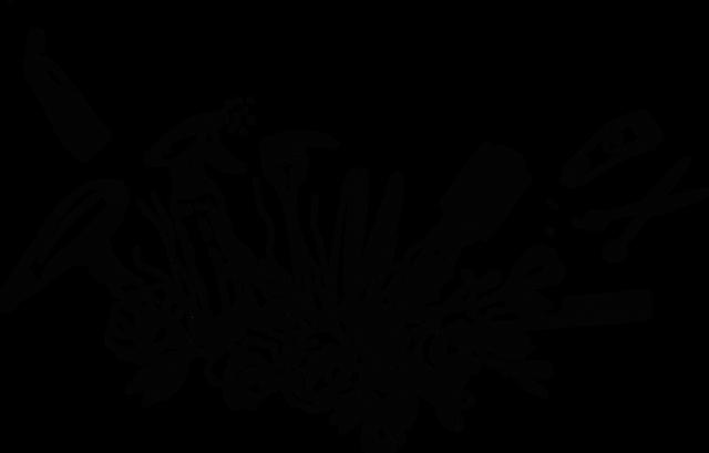 Friseur Anastasia, Hair & Beauty, Otterndorf, Balayage, Olaplex, Newsha