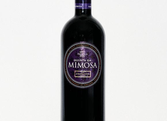Quinta Da Mimosa (Casa Ermenlida Freitas)
