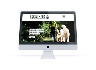 Forest & Fur_portfolio.png