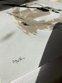 Abstrakte Anor plakater