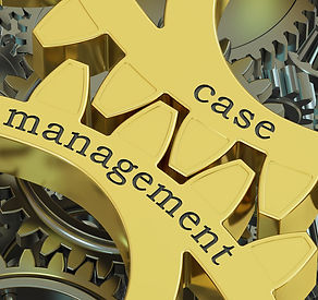 Clinical Case Management
